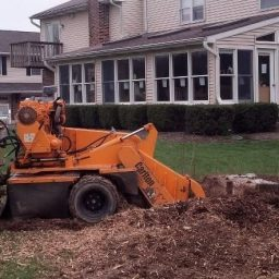 Tree Services - STUMP GRINDING