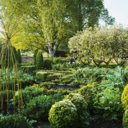 View of garden with flower beds, shrubs and trees in the background.